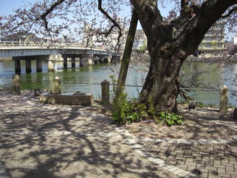 松江大橋南岸からの眺望