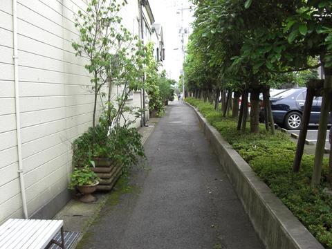 持田屋小路(白潟本町)